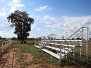 Felton Custom Grandstand Seating at Boggabri Showground